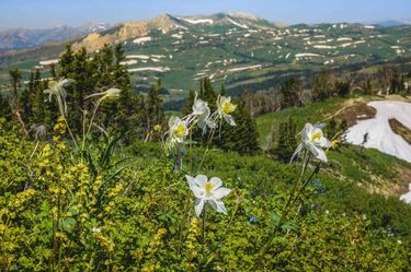 Wyoming Peak hike, Photos by Dave Bell.