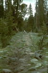 The trail is rocky in places. Wear good hiking shoes.